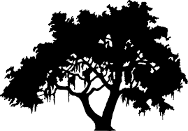 clip art of a silhouette of a live oak tree